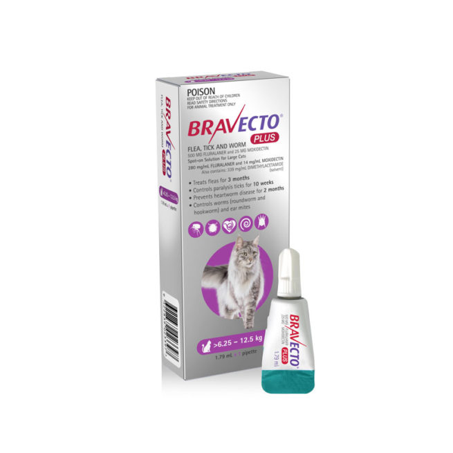 Bravecto Plus Purple Spot-On for Large Cats 1