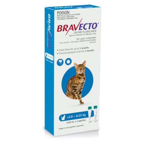 Introducing Bravecto Spot-On for Cats and Dogs 2