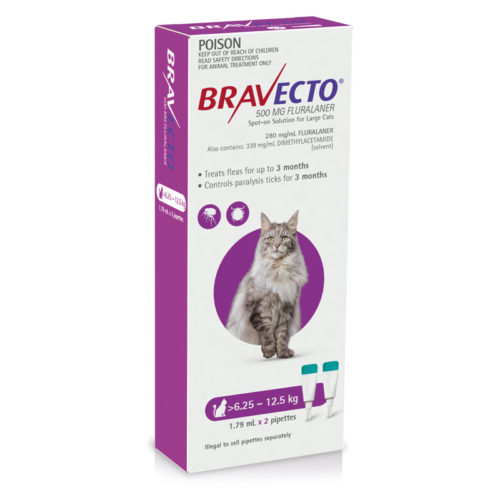 Introducing Bravecto Spot-On for Cats and Dogs 3