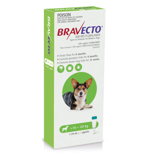 Introducing Bravecto Spot-On for Cats and Dogs 6