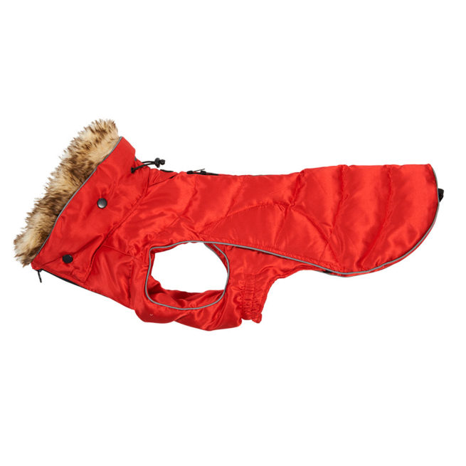 BUSTER Active Winter Dog Coat High Risk Red Small/Medium 1