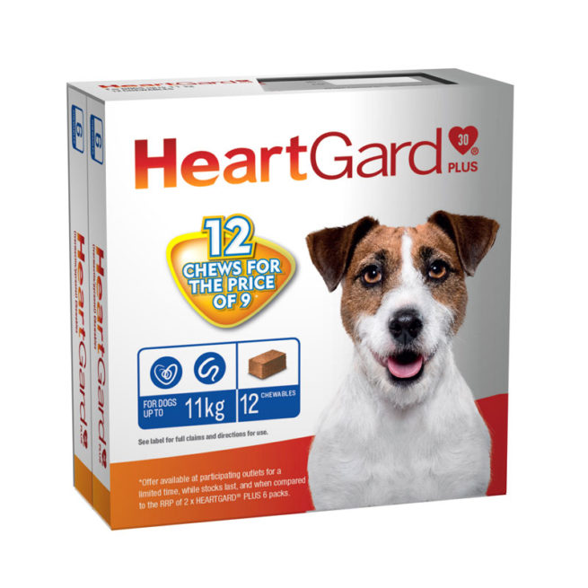 HeartGard Plus Blue Chews for Small Dogs - 12 Pack 1