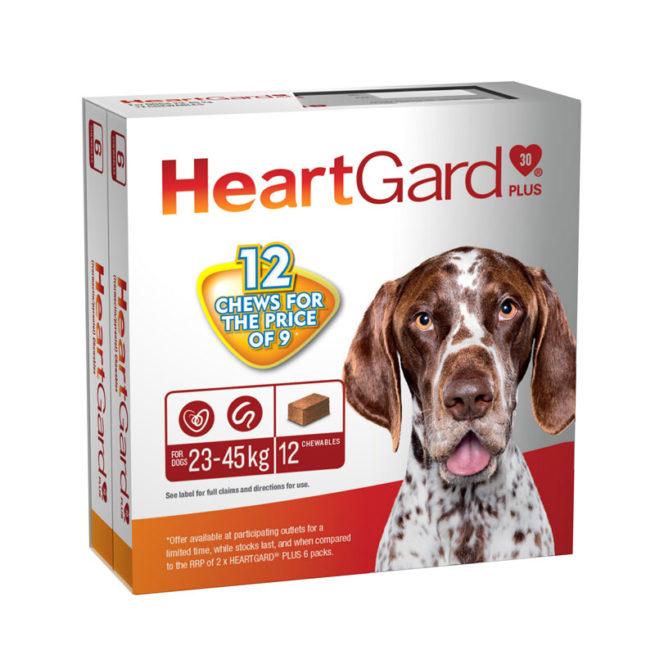 HeartGard Plus Green Chews for Medium Dogs - 12 Pack 1